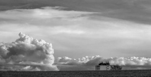 Schön wie die zufällige Begegnung eines Hauses und einer Wolke auf einer Wiese, 23.01.2021