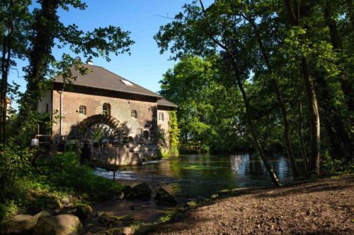 Brempter Mühle, Niederkrüchten II, 23.06.2019