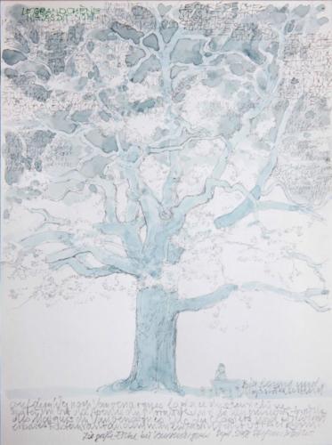 Stefan Kaiser, Die große Eiche bei Vauvenargues, 2018, Bleistift, Aquarell, 31 x 23 cm