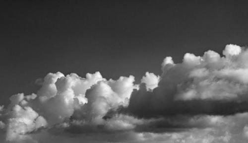 Himmel der Kuscheltiere 12.11.2020