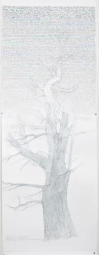 Stefan Kaiser, Himmelsbaum III, 2017, Bleistift, Farbstift, Aquarell, 33 x 85 cm