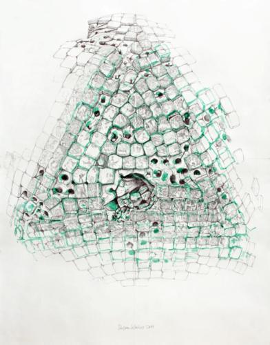 Stefan Kaiser, Nachthaltig, 2011, 100 x 78 cm, Bleistift, Aquarell
