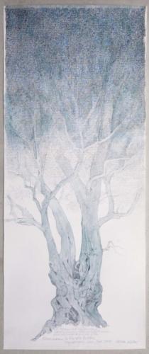 Stefan Kaiser, Olivenbaum in Renoirs Garten, 2017, Bleistift, Farbstift, Aquarell, 85 x 35 cm