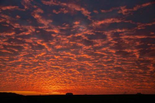 Rot-glühender Wolkenteppich 28.11.2010