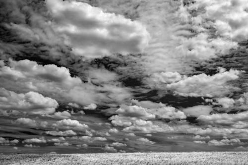 Sommerwolken über gelbem Korn 10.06.2017