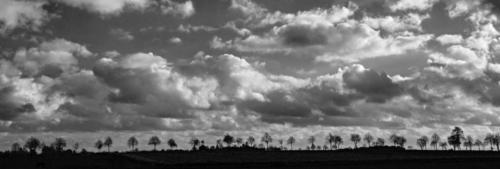 Wolkenhimmel über Bäumchen 13.11.2018